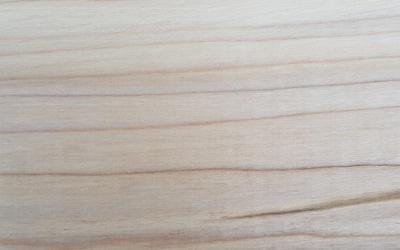 Tulipwood (Poplar)
